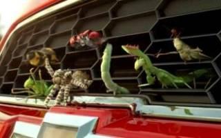 Радиатор что это в машине